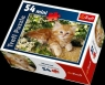 Puzzle 54 Mini Pupile Kot rudy (19426)
