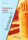 Fundamenty palowe według Eurokodu 7 Puła Olgierd
