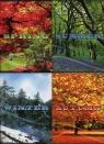 Zeszyt A5 Top-2000 gładki 96 kartek Four Seasons 5 sztuk