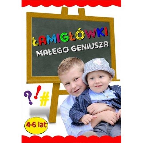 Łamigłówki małego geniusza 4-6 lat Agnieszka Wileńska