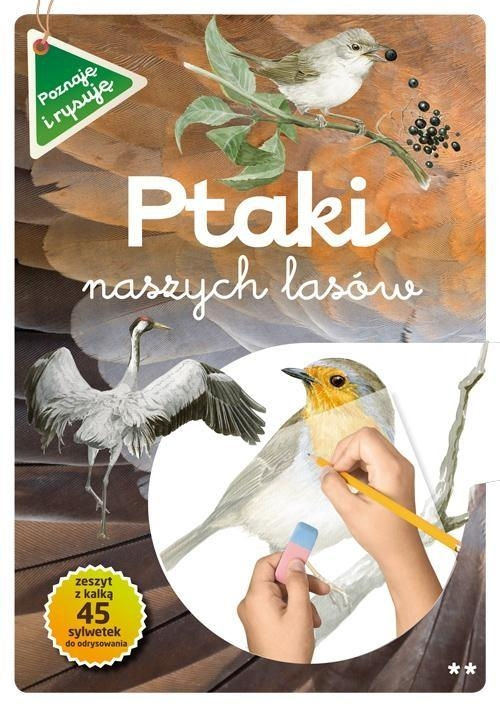 Ptaki naszych lasów Część 2 Kopiec-Sekieta Katarzyna, Maternicka Grazyna