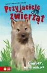 Przyjaciele zwierząt Chaber mały wilczek