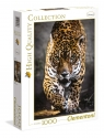 Puzzle High Quality Collection 1000: Walk of the Jaguar (39326)