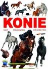 Konie rasy pielęgnacja jeździectwo