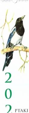 Kalendarz 2022 Paskowy Ptaki ADAM Marta Piwocka