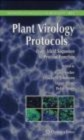 Plant Virology Protocols
