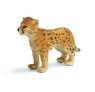 Młody gepard (14327)