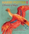 Harry Potter - A History of Magic British Library