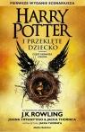 Harry Potter i Przeklęte Dziecko.