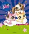 Zabawa kredą Littlest Pet Shop
