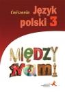 J.Polski GIM 3 Między Nami ćw. wersja B w.2017 GWO A. Łuczak, A. Murdzek