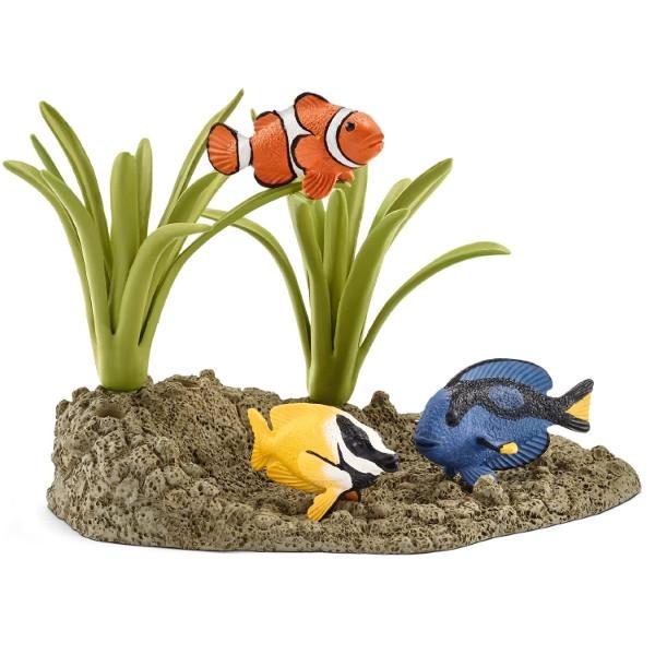 Ryby raf koralowych (42327)