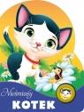 Nieśmiały kotek Urszula Kozłowska