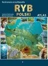 Ilustrowana encyklopedia ryb Grabowska Joanna, Grabowski Michał