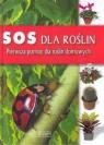 SOS dla roślin. Pierwsza pomoc dla roślin domowych