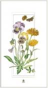 Karnet 12x23 G06 42A 327 + koperta Kwiaty polne