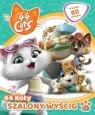 44 Koty cz.2: Szalony wyścig