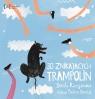 30 znikających trampolin (wyd. 2)