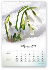 Kalendarz 2016 RW Poezja natury