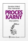 Proces karny Zarys systemu Hofmański Piotr, Waltoś Stanisław