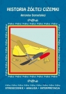 Historia żółtej ciżemki Antoniny Domańskiej