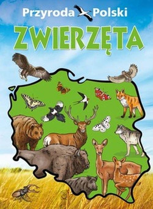 Przyroda Polski (Uszkodzona okładka) praca zbiorowa