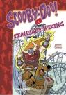 Scooby-Doo! i szalejący Wiking