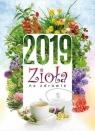 Kalendarz 2019 Ścienny Zioła na zdrowie