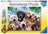 Puzzle XXL 300: Szczęśliwe psy (13228) Wiek: 9+