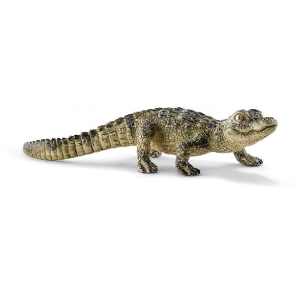 Mały aligator - 14728