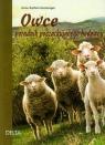 Owce Poradnik dla początkującego hodowcy Gomringer Anne-Kathrin