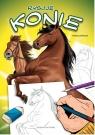 Rysuję Rysuję Konie