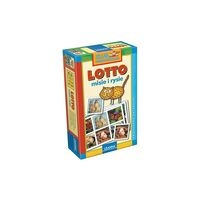 Lotto misie i rysie (00029)