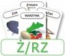 Karty: Logopedyczny Piotruś - Część II, głoska Ż/RZ