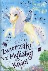 Zwierzaki z Mglistej Kniei Kucyk Kalinka
