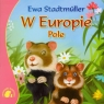 W Europie Pole