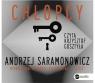 Chłopcy  (Audiobook) Saramonowicz Andrzej