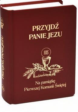 Przyjdź, Panie Jezu bordo ks. Stanisław Groń SJ