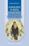 Aniołowie bożej opatrzności Świadectwa i modlitwy do naszych Stanisław Mrozek