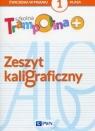 Szkolna Trampolina + Zeszyt kaligraficzny 1 Szkoła podstawowa Głuszniewska Aneta