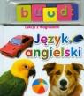 Język angielski Lekcje z magnesami