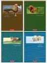 Kołozeszyt Dan-Mark A5/80 kratka Safari