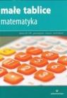 Małe tablice Matematyka (wyd. 2017) Mizerski Witold