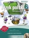 Język polski 6. Kształcenie kulturowo-literackie. Odkrywamy na nowo. Podręcznik do wieloletniego użytku