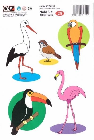 Naklejki Alfika i Zetki 29 Ptaki