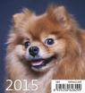 Kalendarz 2015 Szczeniaki Mini Helma