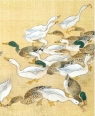 Karnet 17x14cm z kopertą Ducks feeding