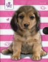 Pamiętnik z kłódką pies The Sweet Pets