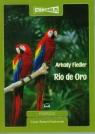Rio de Oro  (Audiobook)