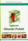 Lądowe ślimaki Polski Atlas i klucz Herczek Aleksander, Gorczyca Jacek